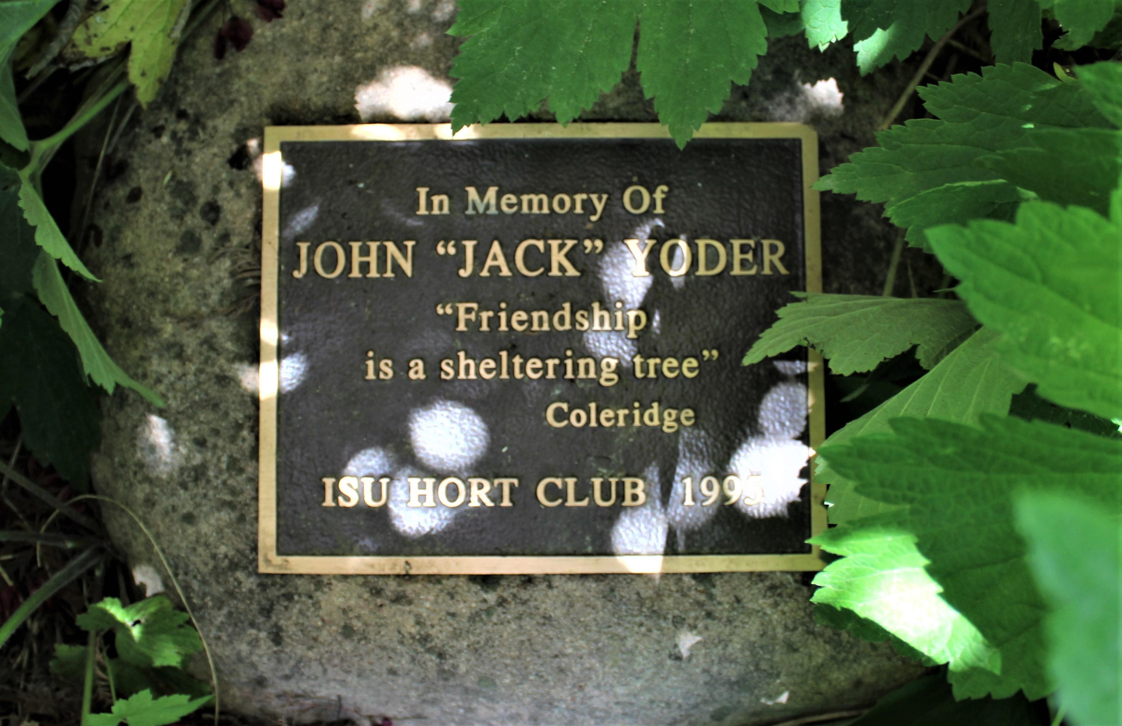 Memorial Tree Amp Rock Plaque